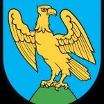 herb miasta Niemodlin
